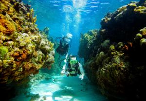 Antigua scuba diving